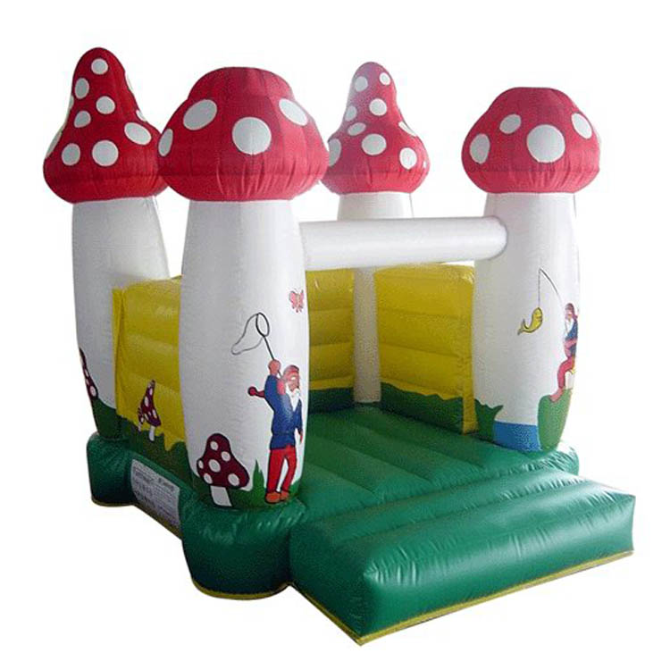 Inflatable Bouncer FLMI-10001
